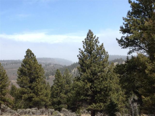 223 Pascoe Ln, Fort Garland, CO 81133 (#8440391) :: Bring Home Denver