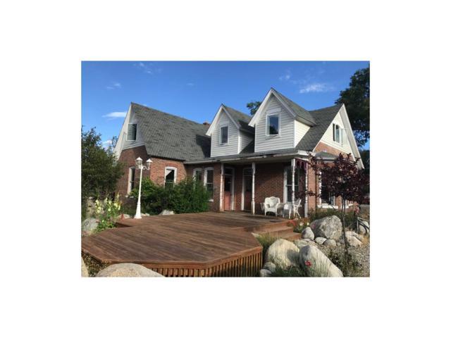 304 S Colorado Avenue, Buena Vista, CO 81211 (MLS #8441010) :: 8z Real Estate