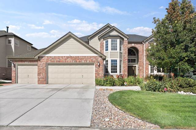 10955 Puma Cliff, Littleton, CO 80124 (#8442728) :: The DeGrood Team