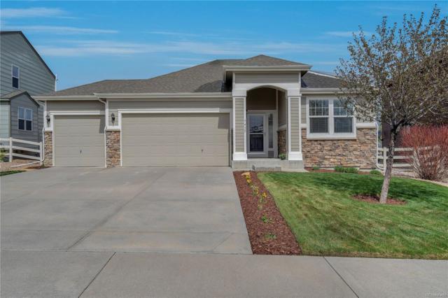5435 Fawn Ridge Way, Castle Rock, CO 80104 (#8443767) :: House Hunters Colorado