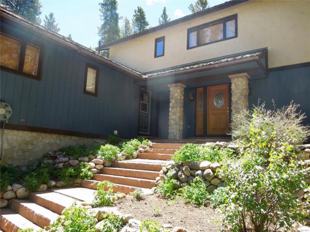 212 Rafferty Drive, Leadville, CO 80461 (MLS #8445354) :: 8z Real Estate