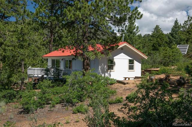 1474 Basin Drive, Cotopaxi, CO 81223 (#8450065) :: Wisdom Real Estate
