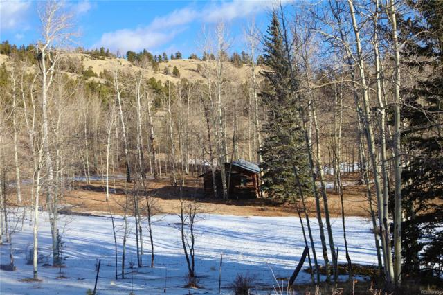 County 88 Road, Guffey, CO 80820 (#8450981) :: The DeGrood Team