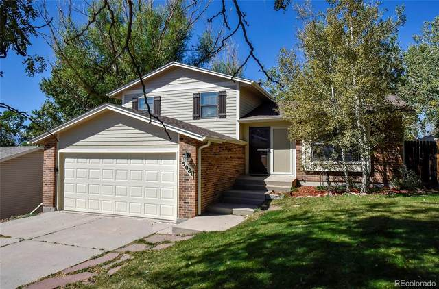 5081 Harvest Road, Colorado Springs, CO 80917 (#8454727) :: The DeGrood Team