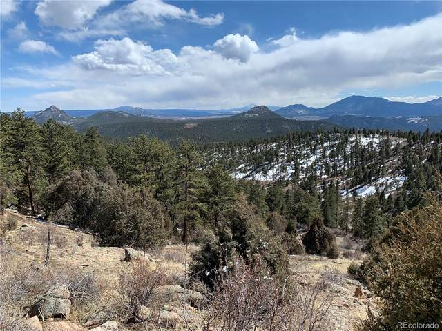 14336 Wamblee Trail, Conifer, CO 80433 (#8455022) :: THE SIMPLE LIFE, Brokered by eXp Realty