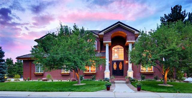 831 Courtland Place, Highlands Ranch, CO 80126 (#8458175) :: The DeGrood Team