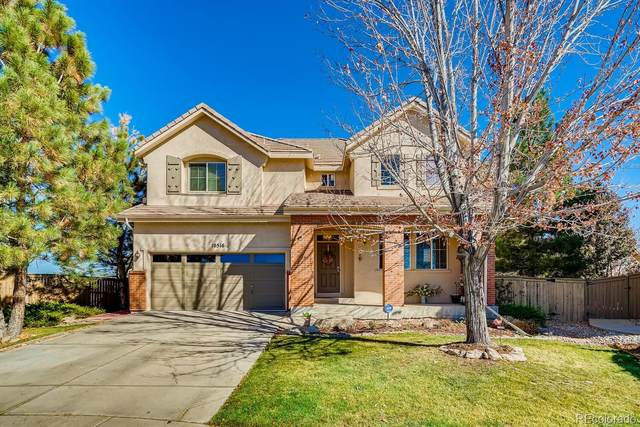 10516 Westcliff Way, Highlands Ranch, CO 80130 (#8459253) :: Mile High Luxury Real Estate