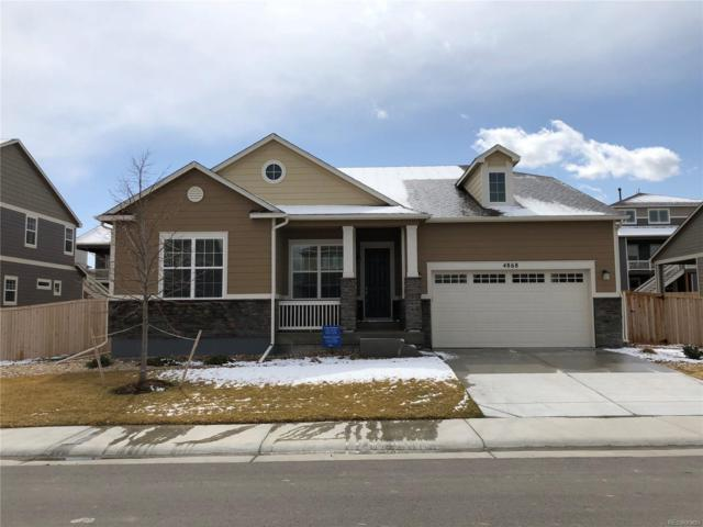 4868 E 142nd Place, Thornton, CO 80602 (#8461255) :: The Peak Properties Group