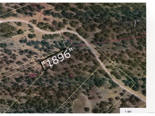 1896 Us Forest Service 172.1A Road, Idaho Springs, CO 80452 (MLS #8463495) :: 8z Real Estate