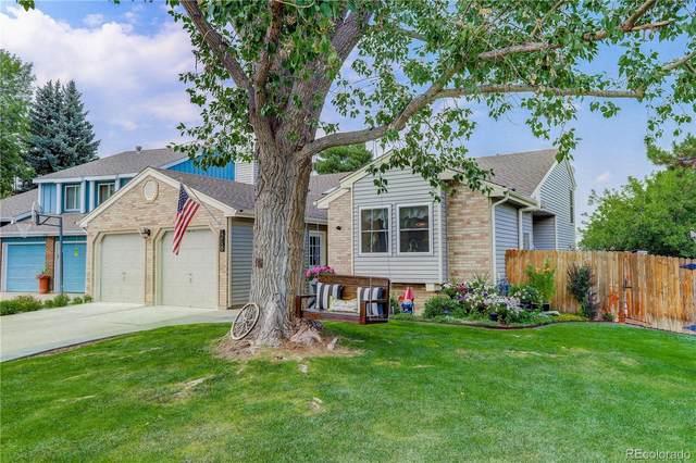 12159 W Little Haystack Mountain, Littleton, CO 80127 (MLS #8464040) :: 8z Real Estate