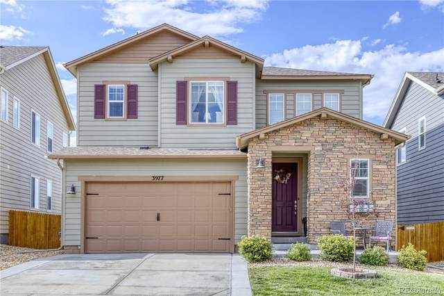 3977 Trail Stone Circle, Castle Rock, CO 80108 (#8464873) :: The DeGrood Team