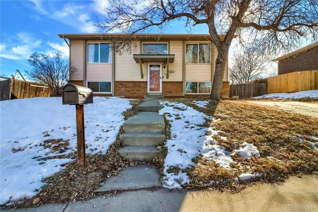 1444 Explorador Calle, Denver, CO 80229 (#8467224) :: Venterra Real Estate LLC