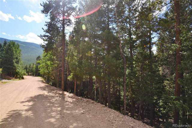8793 Martin Lane, Conifer, CO 80433 (MLS #8472800) :: 8z Real Estate