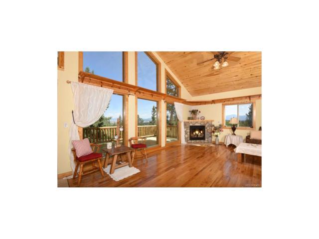 770 Wampum Lane, Como, CO 80456 (MLS #8473380) :: 8z Real Estate