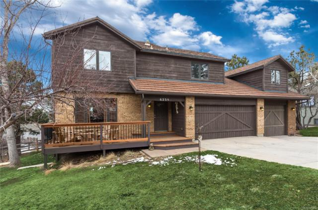 6239 Mad River Court, Parker, CO 80134 (#8478260) :: The Heyl Group at Keller Williams