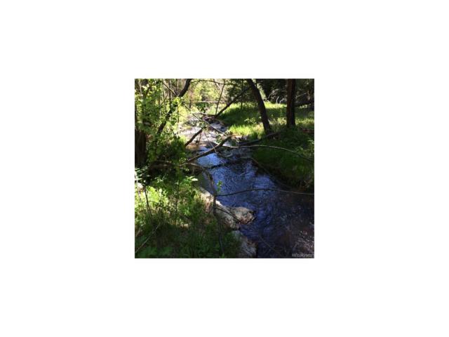 00 Indian Springs Road, Conifer, CO 80433 (MLS #8481259) :: 8z Real Estate