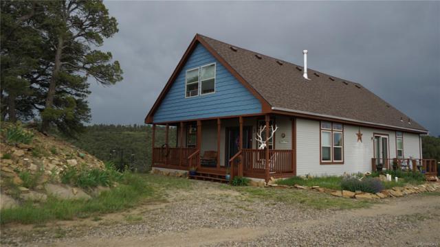 33030 Squaw Creek Lane, Trinidad, CO 81082 (MLS #8481450) :: 8z Real Estate