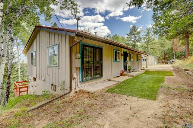 9870 City View Drive, Morrison, CO 80465 (#8484080) :: Own-Sweethome Team