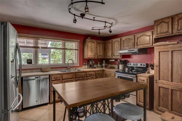 131 Park Avenue, Steamboat Springs, CO 80487 (#8486230) :: The DeGrood Team