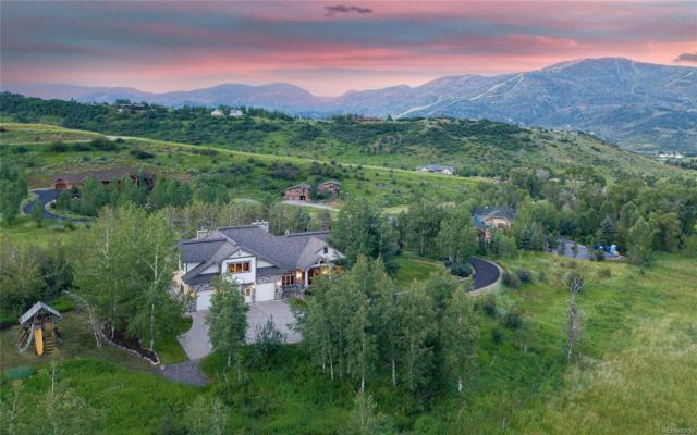 35935 Agate Creek Road, Steamboat Springs, CO 80487 (MLS #8487224) :: Kittle Real Estate