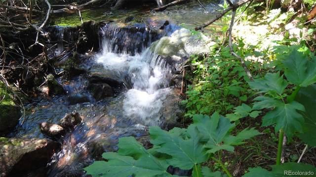 112 Silver Creek Road, Black Hawk, CO 80422 (#8491331) :: Peak Properties Group