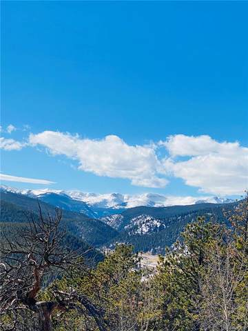 Lot 9 Dude's Drive, Rollinsville, CO 80474 (#8493264) :: The DeGrood Team