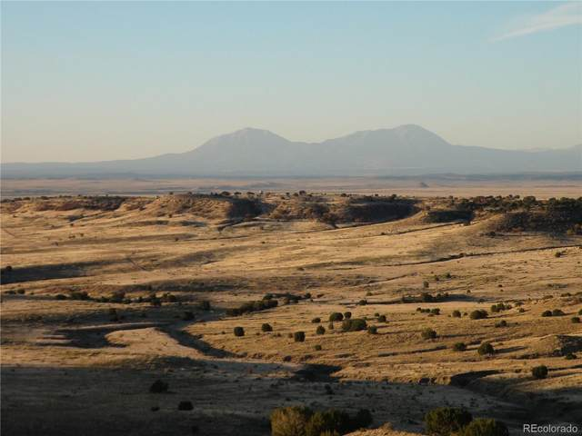 Sunset Ridge, Rye, CO 81069 (#8493987) :: The DeGrood Team