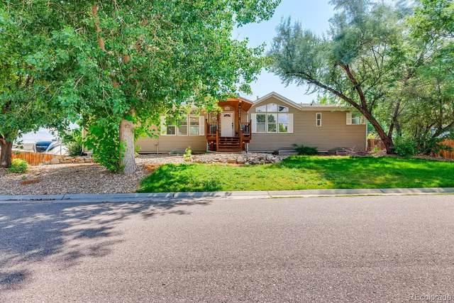 7968 S Dudley Street, Littleton, CO 80128 (MLS #8494150) :: Find Colorado
