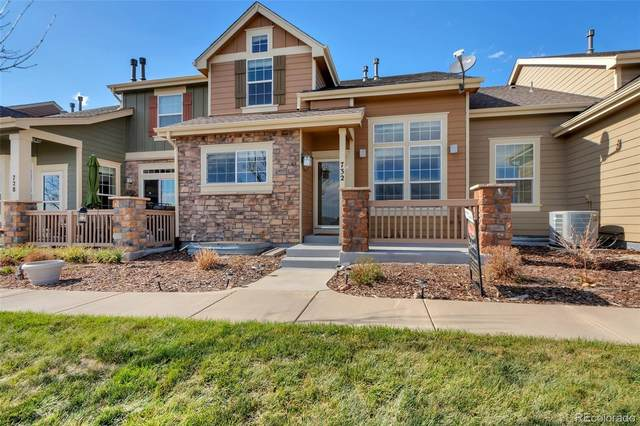 732 Crooked Y Point, Castle Rock, CO 80108 (#8498595) :: The DeGrood Team