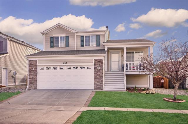 6163 Great Plains Drive, Colorado Springs, CO 80923 (#8499846) :: The Peak Properties Group