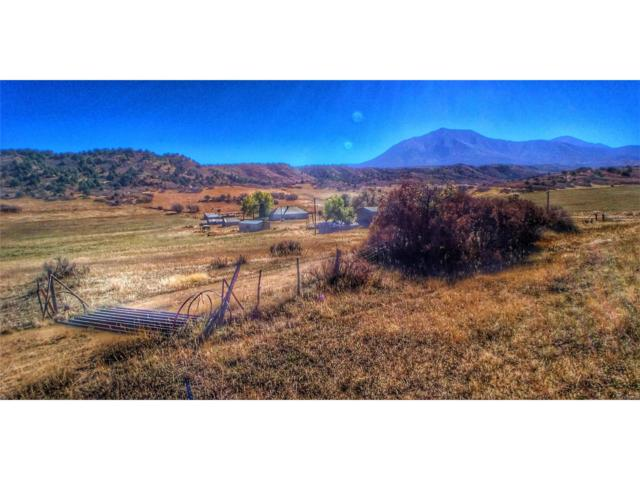 10454 County Rd 310, Walsenburg, CO 81089 (MLS #8502256) :: 8z Real Estate