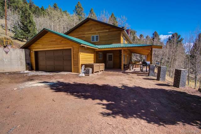 72 Mullite Lane, Divide, CO 80814 (#8503381) :: Venterra Real Estate LLC