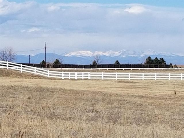 282 Peak View Place, Parker, CO 80138 (#8504014) :: The Galo Garrido Group