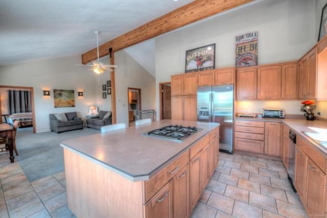 1073 Ute Trail, Como, CO 80432 (#8504640) :: The Pete Cook Home Group
