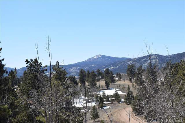 1704 Aspen Trail, Hartsel, CO 80449 (#8508435) :: The DeGrood Team