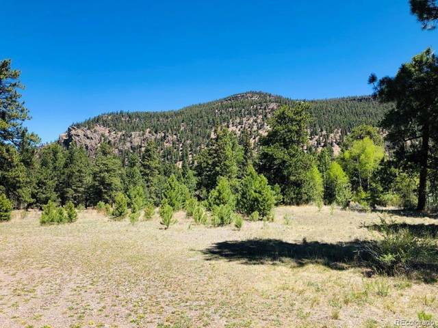 133 Canyon View Drive, Antonito, CO 81120 (MLS #8508878) :: 8z Real Estate