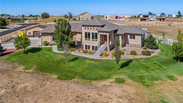 32698 Bravo Point, Windsor, CO 80550 (#8519720) :: The DeGrood Team