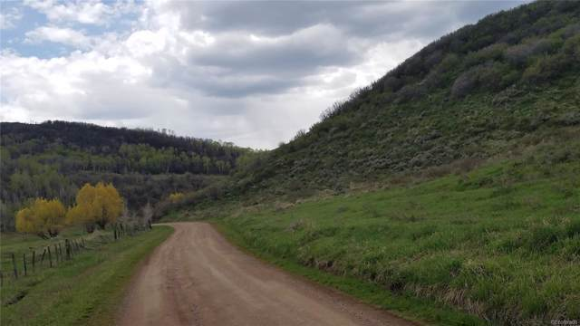 Old Stage Trail Trail, Oak Creek, CO 80467 (#8521420) :: The DeGrood Team