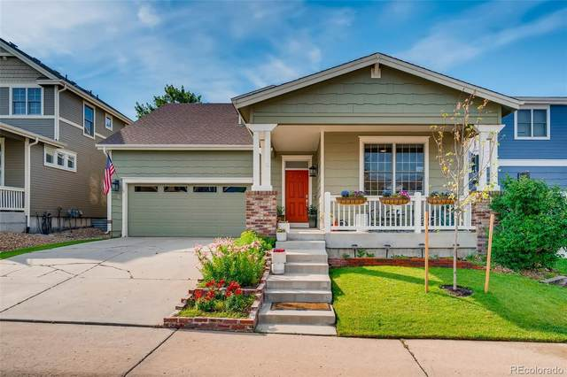 3254 Brushwood Drive, Castle Rock, CO 80109 (#8521437) :: The Colorado Foothills Team | Berkshire Hathaway Elevated Living Real Estate