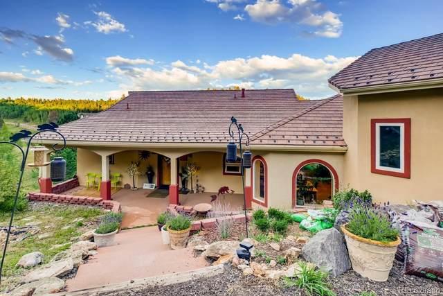 2665 Coyote Circle, Black Hawk, CO 80422 (#8522081) :: Kimberly Austin Properties