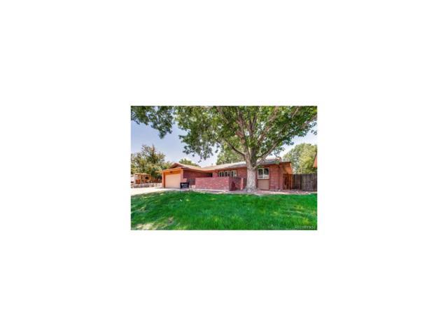 566 S Field Street, Lakewood, CO 80226 (MLS #8522629) :: 8z Real Estate