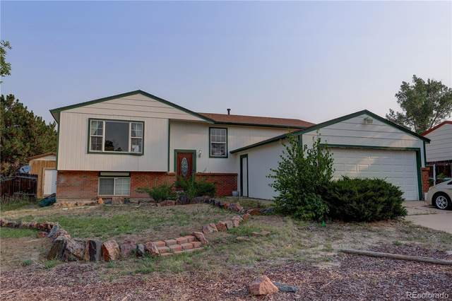 805 Canyon Drive, Castle Rock, CO 80104 (#8524714) :: Colorado Home Finder Realty