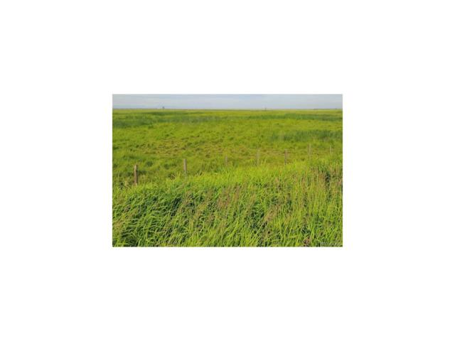 15333 Monnahan Road, Byers, CO 80103 (MLS #8531017) :: 8z Real Estate