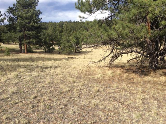 625 Mustang Trail, Florissant, CO 80816 (MLS #8531656) :: 8z Real Estate