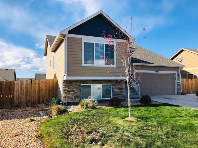 2921 Aspen Avenue, Greeley, CO 80631 (#8534376) :: The Heyl Group at Keller Williams