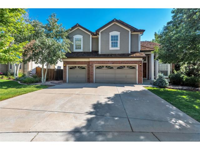 9782 Cypress Point Circle, Lone Tree, CO 80124 (#8537330) :: Structure CO Group