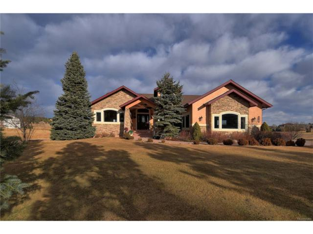 910 E Trumpeters Court, Monument, CO 80132 (MLS #8537340) :: 8z Real Estate
