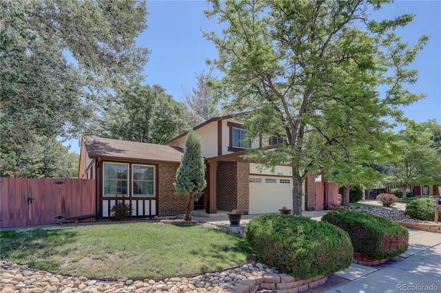 4212 W 110th Place, Westminster, CO 80031 (#8537850) :: The Margolis Team