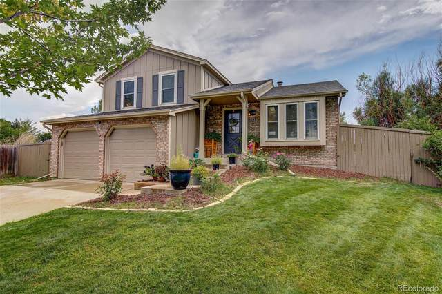 8494 Wheatgrass Circle, Parker, CO 80134 (#8542530) :: Realty ONE Group Five Star