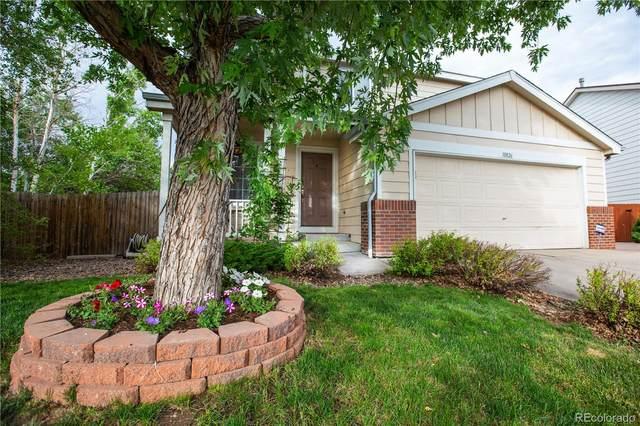 10826 Steele Street, Northglenn, CO 80233 (#8544379) :: The Peak Properties Group